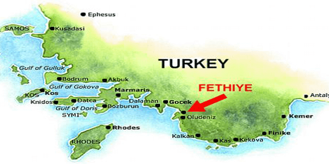 Do you need translation services in Fethiye?